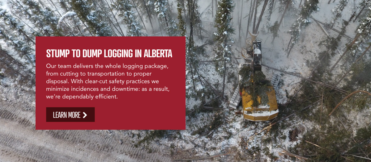 Forest Trotter - Log Hauling and Harvesting Services, La Crete, Alberta