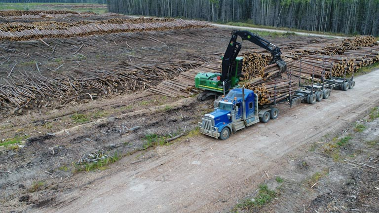 Forest Trotter - La Crete, Alberta - Logging Equipment - Log Loader