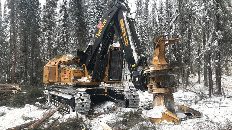 Forest Trotter - La Crete, Alberta - Logging Equipment - Buncher
