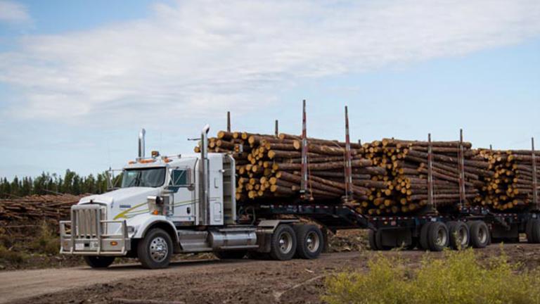 Forest Trotter - La Crete, Alberta - Logging Equipment - Log Truck